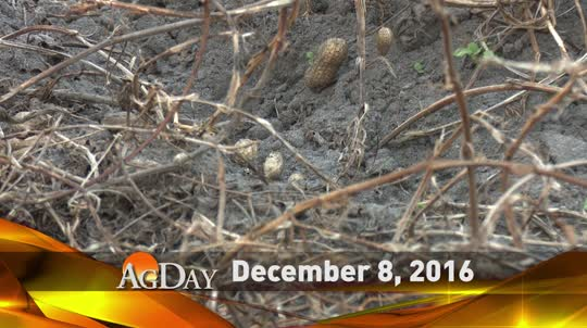 12/08/2016 AgDay