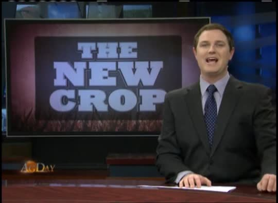 The New Crop: North Concord Farms