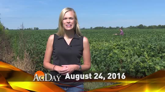 08/24/16 AgDay