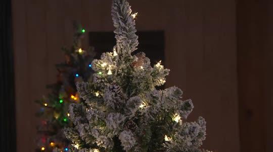 Bethlehem Lights 9' Woodland Pine Christmas Tree Winstant Power