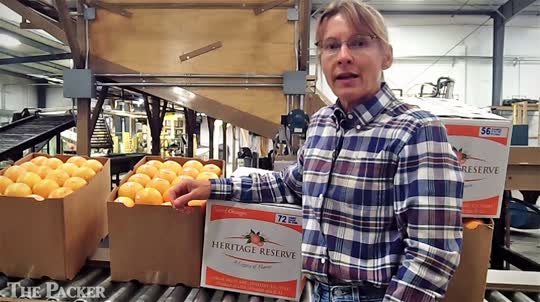 Grower-packer-shippers encouraged by fall citrus crop