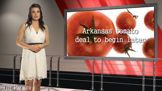 Arkansas growers prepare tomatoes for June 10 start