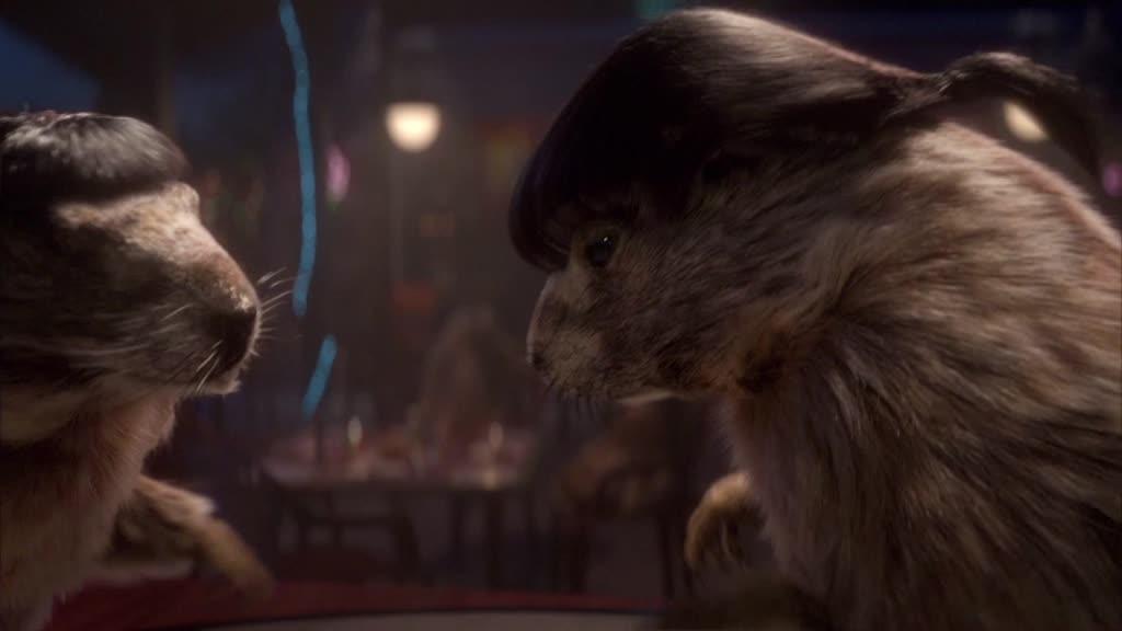 Marmots - Movies