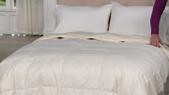 Northern Nights Versailles 500TC 550FP Reversible Twin Down Comforter. Back  to video. On-Air Presentation 259f1ec69