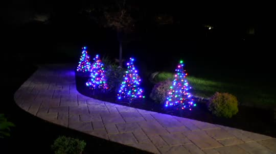 S/2 Pre-Lit LED 3' Fold Flat Outdoor Christmas Trees By