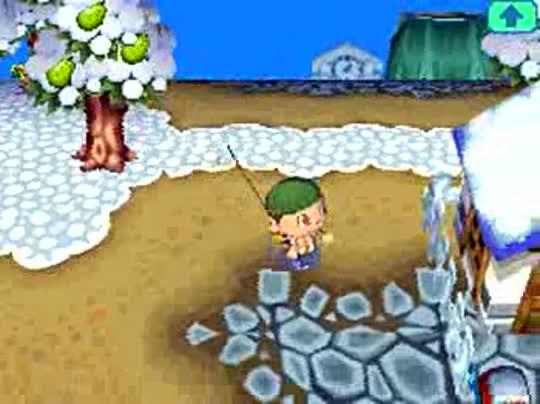 Video Animal Crossing Wild World