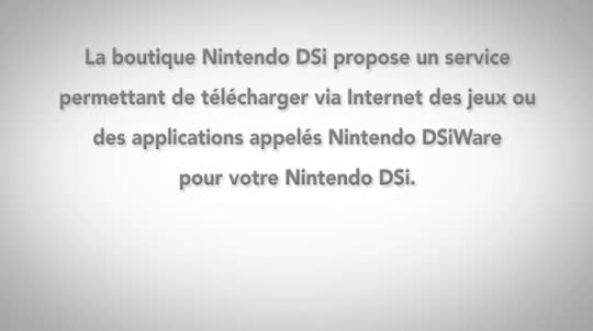 Boutique Nintendo DSi